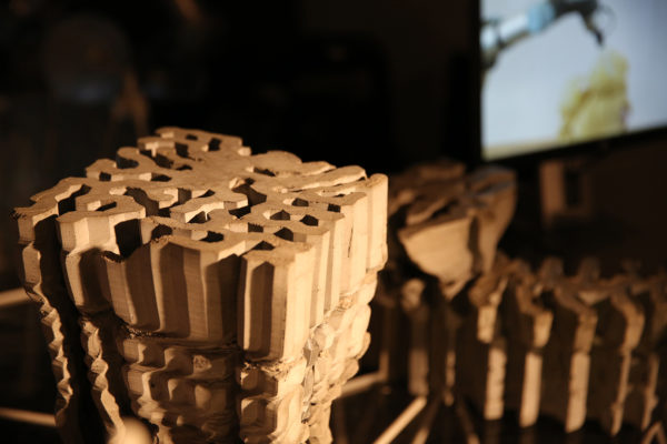 diferencovaný růst a 3D tisk struktur