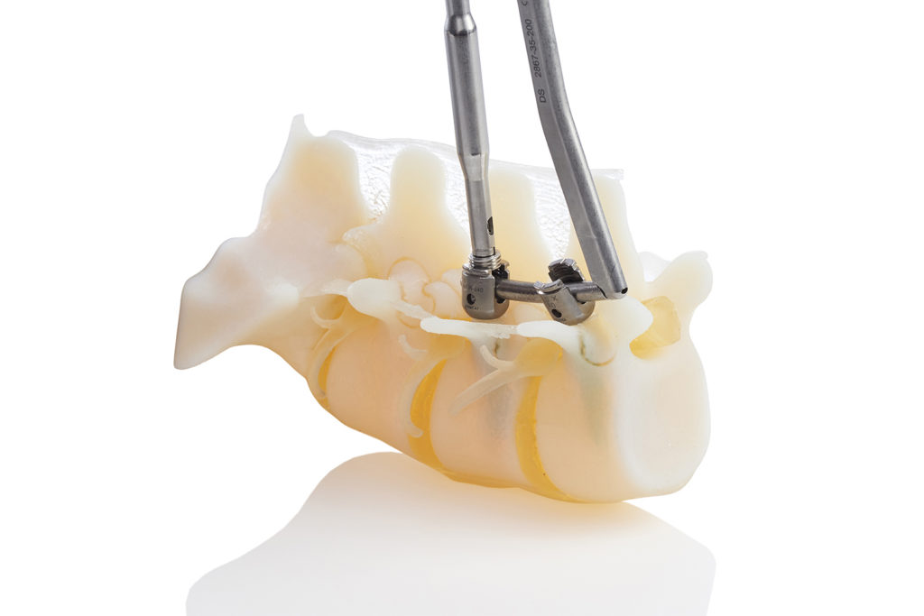 stratasys j750 digital anatomy model