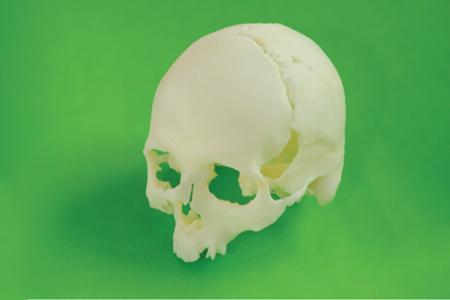 Lebka upíra z 3D tisku